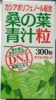 富山スカイ 桑の葉青汁粒 300粒(3個セット)【送料無料】